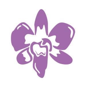 Orchid FP Salon